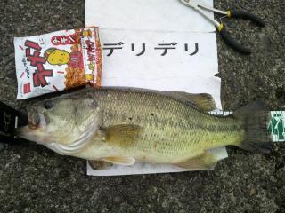10kitaura50804.jpg