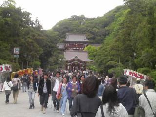 501鎌倉3