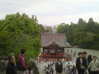 501鎌倉1
