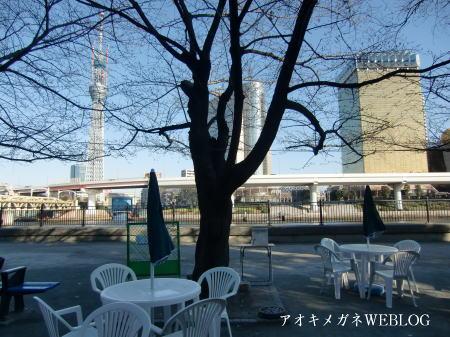 隅田公園オープンカフェからの景色