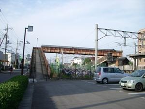 IMGP2559.jpg