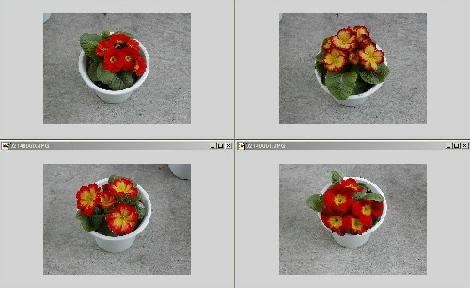 20060217203540.jpg