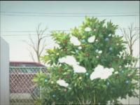 けいおん! 07曲目 「クリスマス!」.mp4_000090090