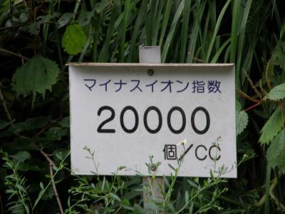 P8090100 []