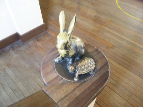 ウサギとカメ!