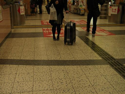 MiyazakiStation9.jpg