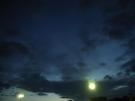 NightWander10.jpg