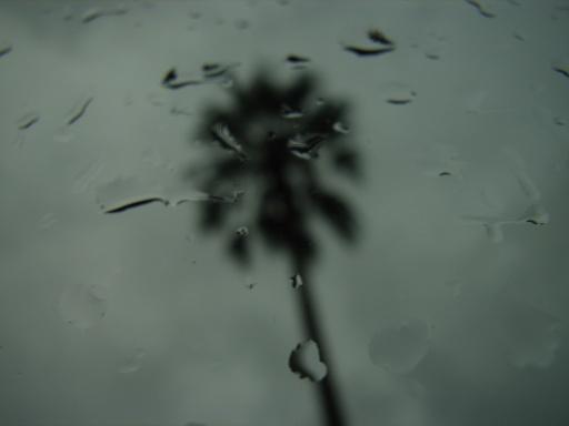 RainyTime32.jpg