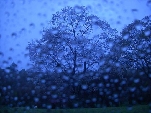 RainyTime33.jpg