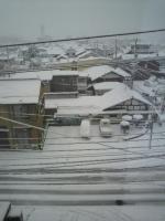 さえちゃんとクリスマス2011 042