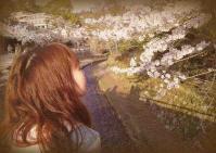 お花見in宮島 057インスタグラム風