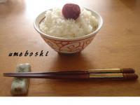 080912umeboshi.jpg