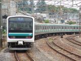 SANY0190 (Large)