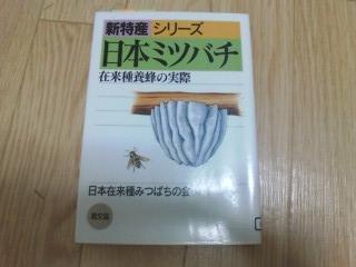 20090129D1000007.jpg