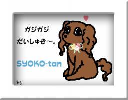 syoko-chan_20090804011046.jpg