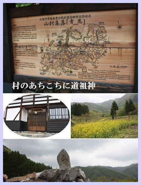 IMG_72071116.jpg