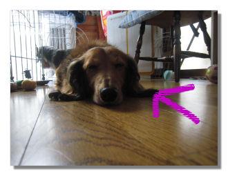 hitoriasobi4_20080916032653.jpg