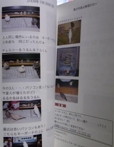R0011385-1.jpg