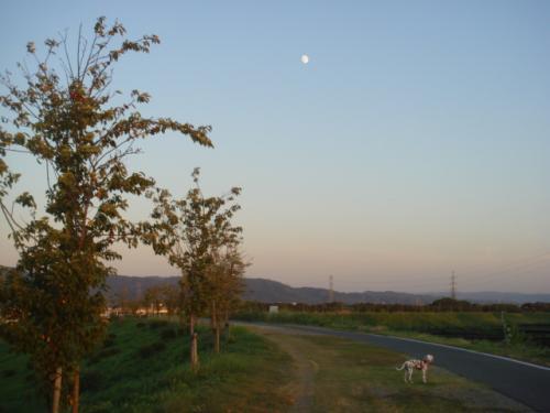 お月様とペンネ
