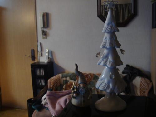 家のもみの木