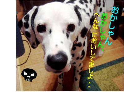 DSC0618_convert_20100618040534.jpg