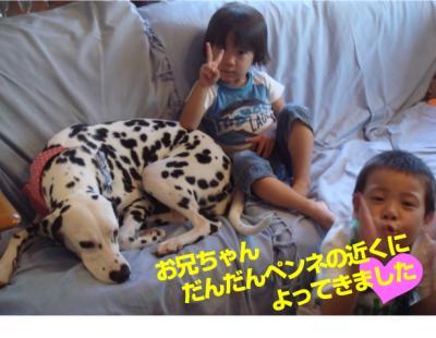 DSC06977_convert_20100901230447.jpg