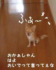 2006.8.23-2.jpg