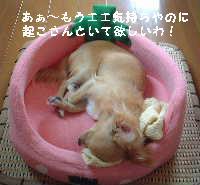 blog18.8.14-3.jpg