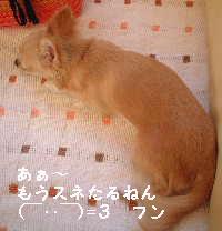 blog18.8.16-4.jpg