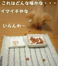 blog18.8.19-2.jpg