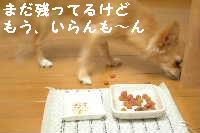blog18.8.19-3.jpg