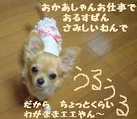 blog18.9.25.jpg