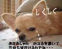 blog18.9.30.jpg