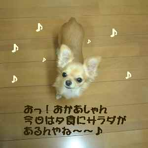 blog2006.10.19-2.jpg
