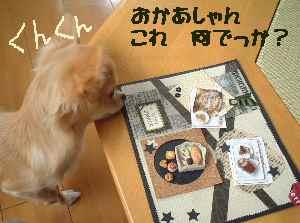 blog2006.10.20-1.jpg