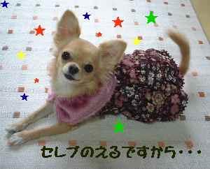blog2006.10.20-3.jpg
