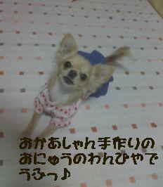 blog2006.11.26.jpg