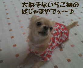 blog2006.11.27.jpg