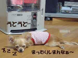 blog2006.12.2.jpg