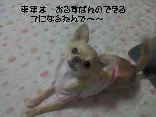 blog2006.12.25.jpg