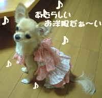 blog2006.9.27-3.jpg