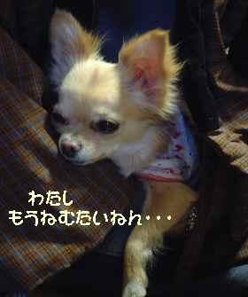 blog2007.2.10.jpg