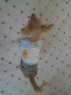 blog2007.2.4-1.jpg