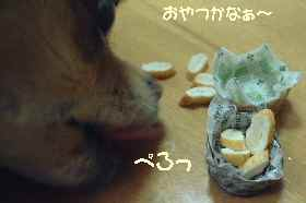 blog2007.2.8.jpg