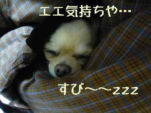 blog2008010702.jpg
