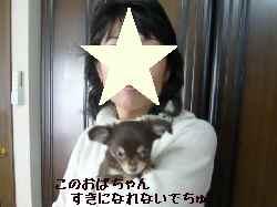 blog2008013101.jpg