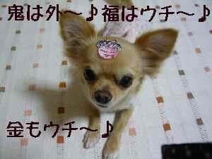 blog2008020303.jpg