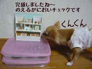 blog2008020402.jpg