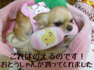 blog2008020501.jpg