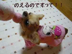 blog2008020502.jpg